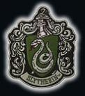 X-Large House Crest Slytherin